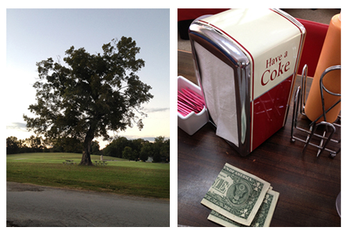 "Old tree and sunset at the North Chickamauga Creek Greenway. And a ""Drink Coke"" napkin holder at Nikki's drive-in."